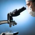 Микроскопия мазка из шейки матки