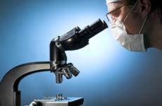Исследование мазков на цитологию шейки матки: расшифровка