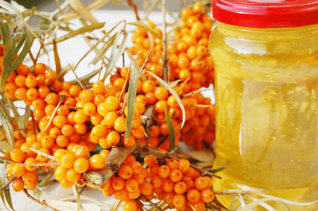 Облепиховое масло - уникальное по составу и свойствам народное средство