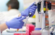 Что такое анализ на скрытые инфекции и как его сдать